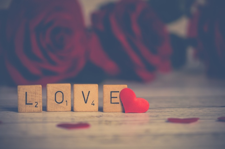 "Scrabble squares spell the word, ""Love."""