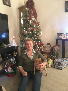 A photo shows grandma holding a small brown chihuahua