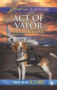 act of valor cover image