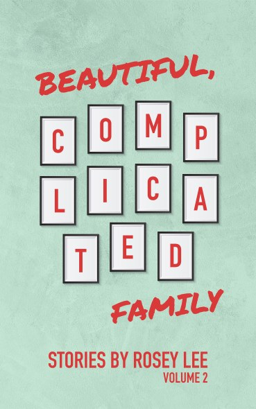 The cover of beautiful complicated family is green