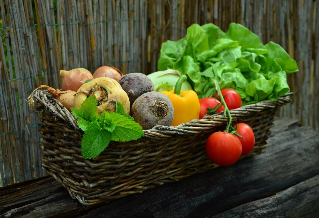 Many delicious vegetables in a basket