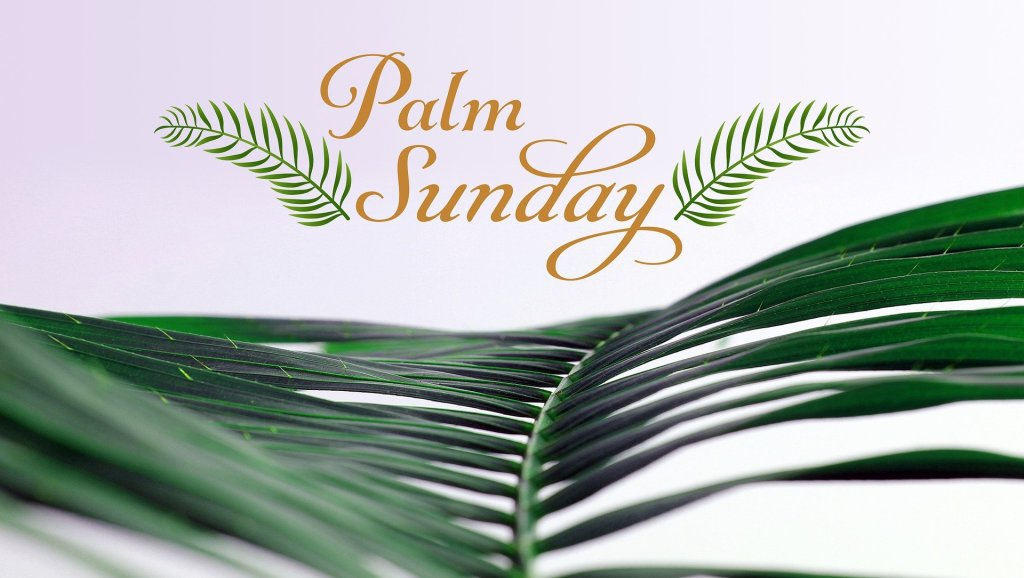The picture shows green palm branches and says PALM SUNDAY.